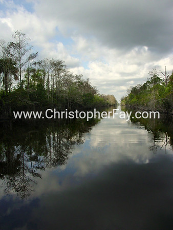 Inland Marsh and Water Images