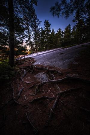 Woodland Twilight Trail - Grundy Lake Provincial Park, Ontario