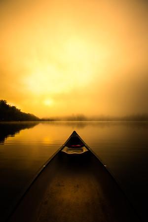 Golden Morning Glow