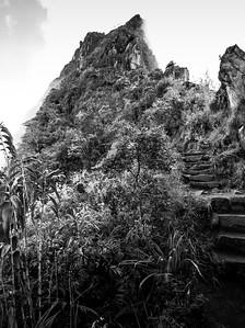 On our way to Huayna Picchu, Machu Picchu, Peru