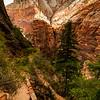 Zion National Park - East Rim Trail