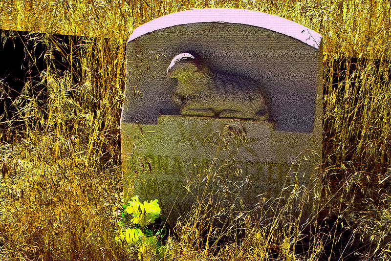 Edna M. Beckert<br /> Comstock Cemetery, Virginia City, Nevada