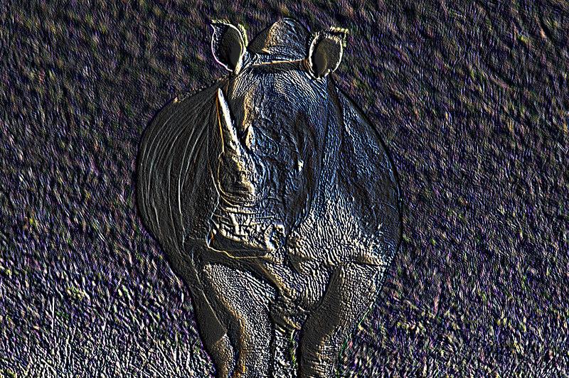 Charging Rhino<br /> Wildlife Safari, Winston, Oregon
