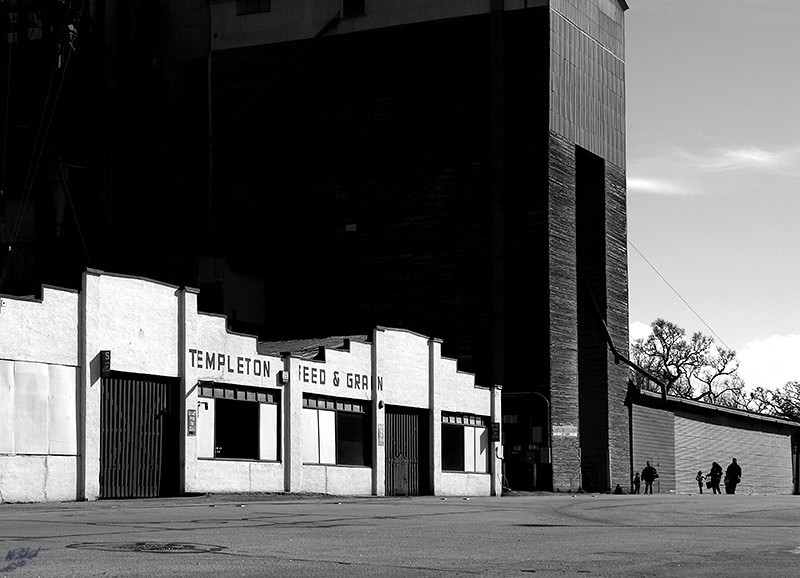 """Templeton Feed and Grain"" (Original photograph by WB Eckert, digital print)"