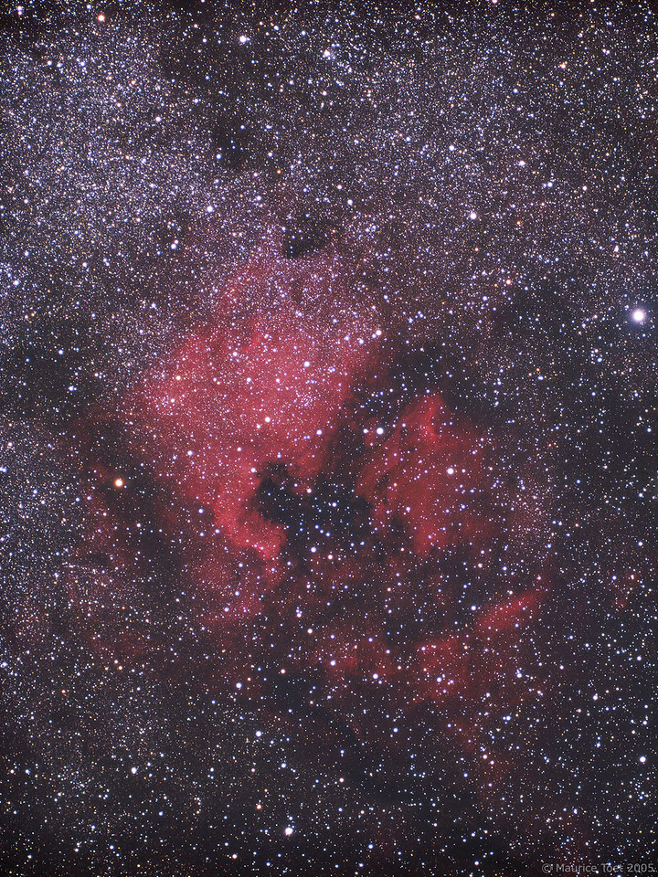 NGC 7000 & IC 5070, North America and Pelican Nebula