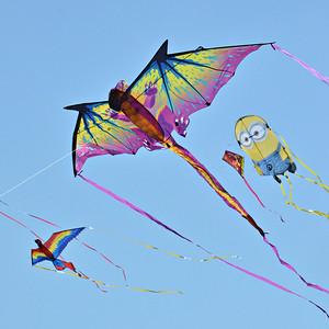 Kite Festival - Apr 2014