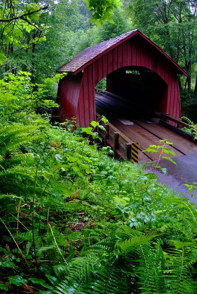 """Covered Bridge"" / Oregon Coast"