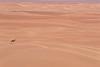 """""""Lone Camel"""" / Sahara Desert"""
