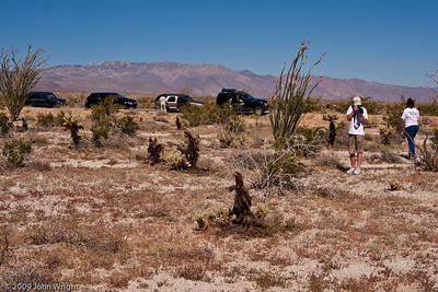 "Anza Borrego and our ""caravan..."""