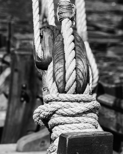 Detail of boat rigging, Annapolis, Maryland