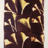Cala Lilies, 2004<br /> Photographic Emulsion Transfer Collage on Glass