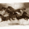 Stampede I, 2006<br /> Photographic Emulsion Transfer Collage
