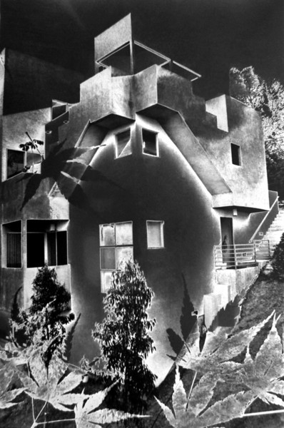 Escobedo's Back Elevation, 1992<br /> Darkroom Solarization and Photogram