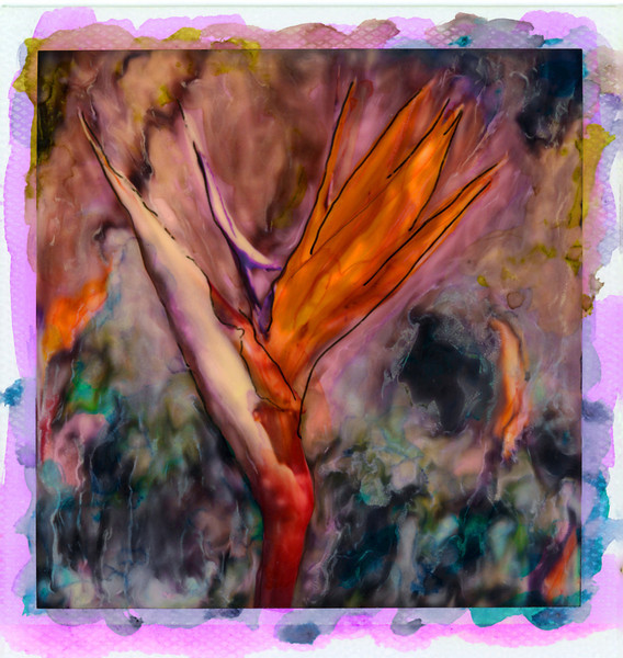 Bird of Paradise I, 1998<br /> Polaroid Manipulation
