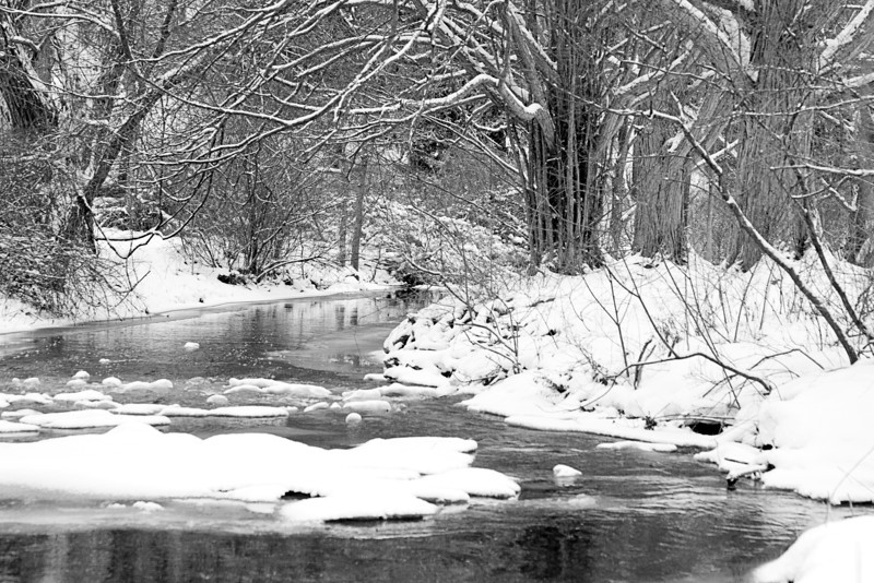 Winter Stream Scene
