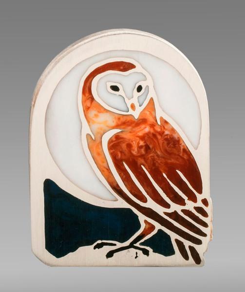 Barn Owl by Mary Ellen O'Connor
