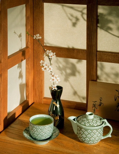 Artists with specialized works may wish to construct appropriate sets. Here I constructed a simple shoji screen set for Japanese tea and sake ware. Plum tree blossoms add backlight interest to the screens (I was lucky they were in season). Shot with hot lights and a better digital camera.