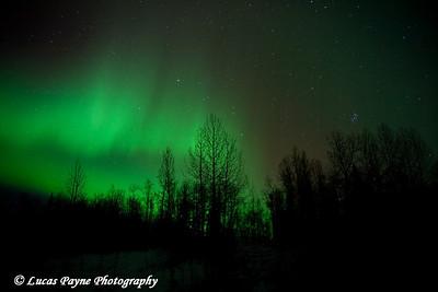 The aurora borealis in Alaska. October 28, 2008