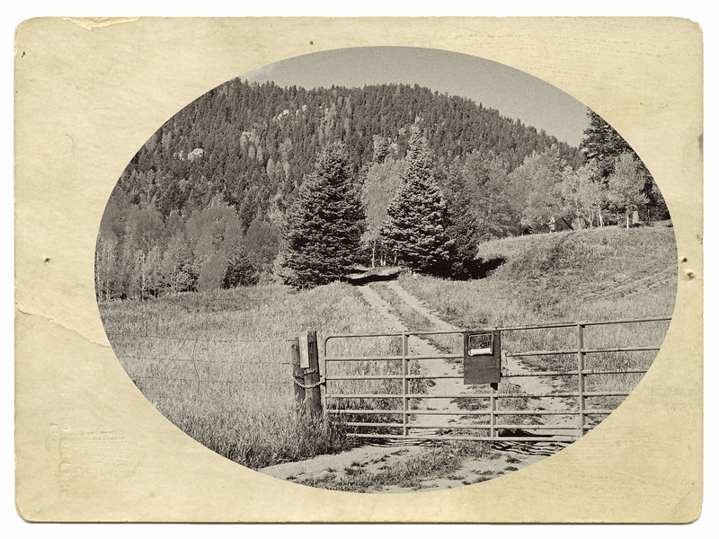 New Mexico-685