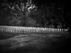 Camp Sumter-801c Andersonville, GA
