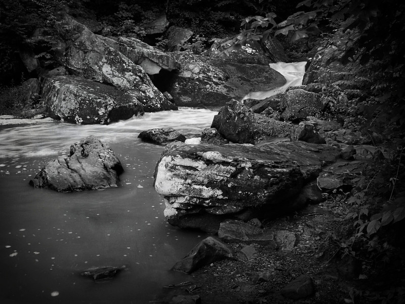 Gauley River Tributary-476d