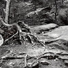 Hocking Hills-756BW