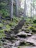 Garden Steps 2