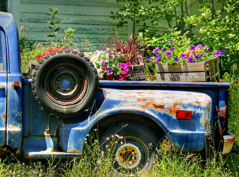 Gus' Truck-013