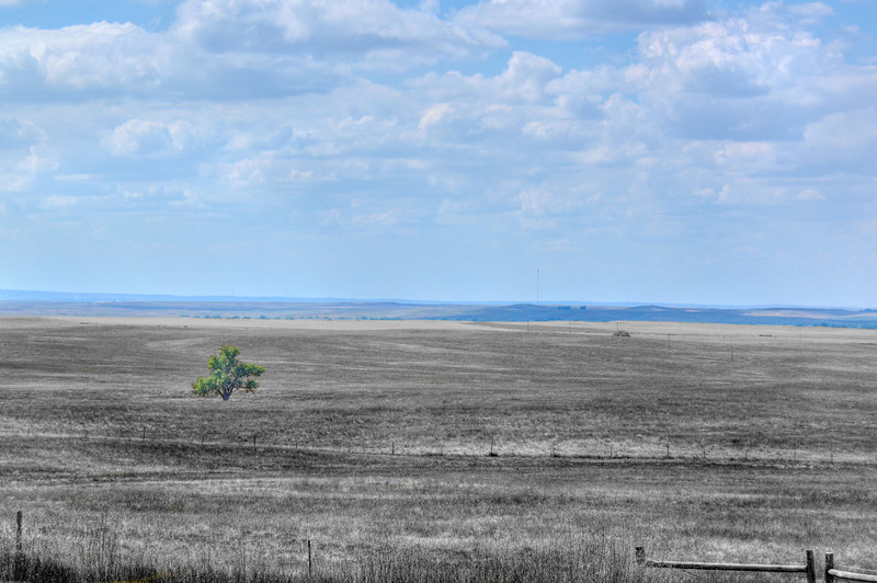South Dakota Plains-594b