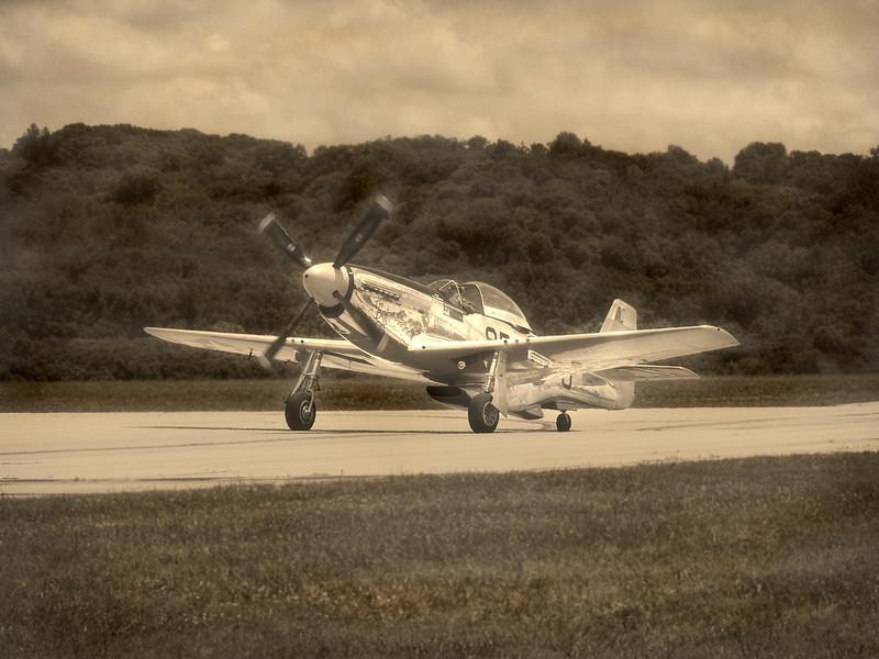 Mustang-359