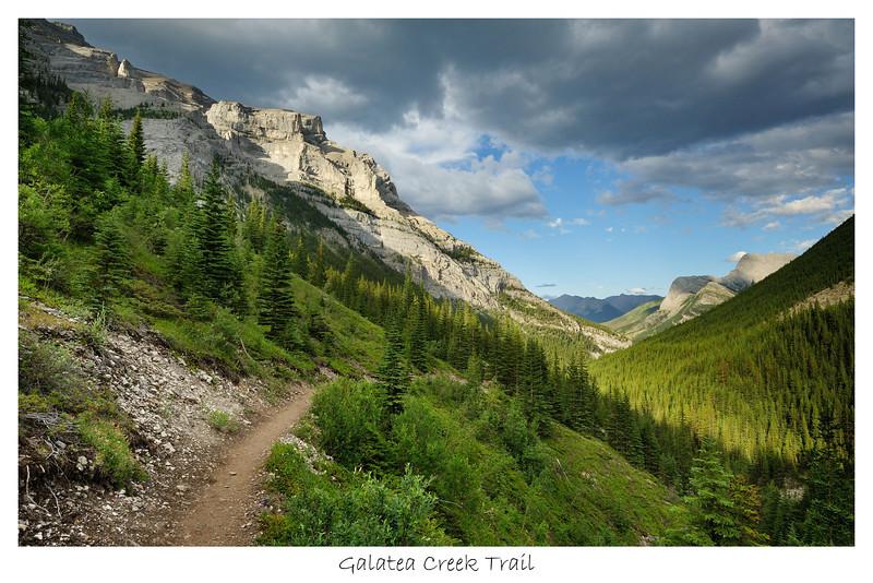 Galatea Creek Trail