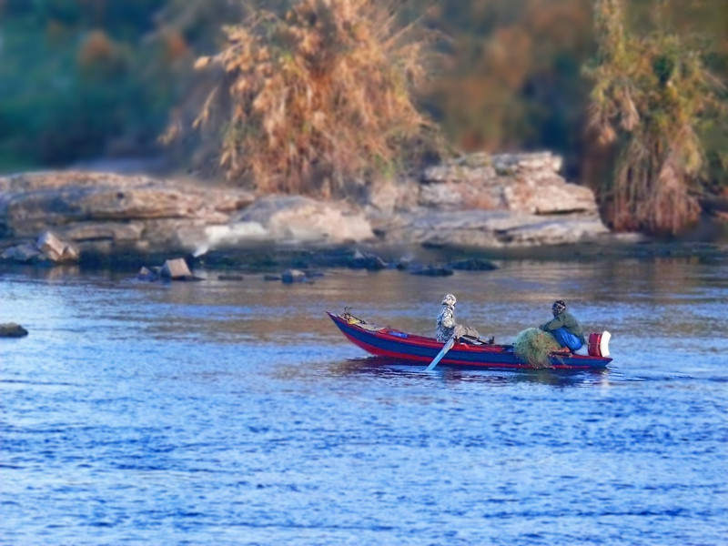 On the Nile-2