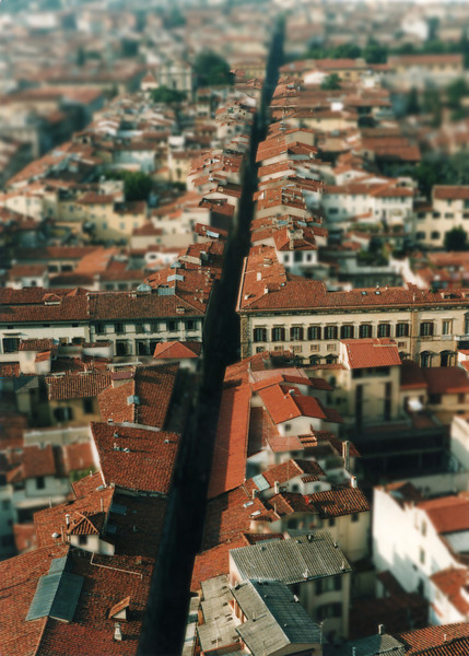 Florence Rooftops, 3-D