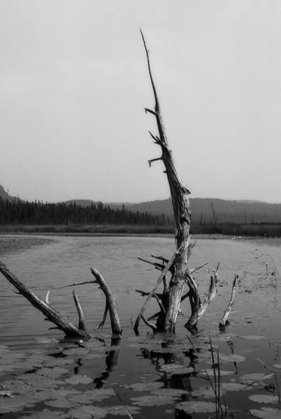 Opeongo Lake, Ontario