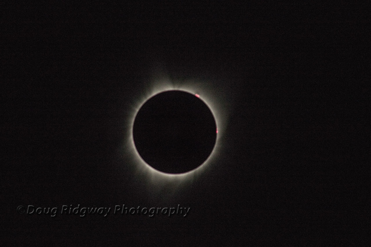 Totality2