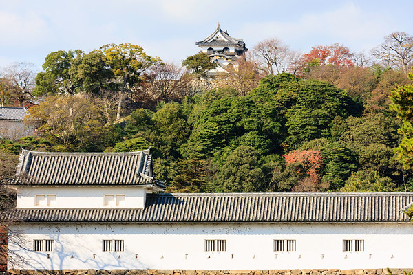 Sawaguchi yagura, turret, with the tenshu, keep on hilltop.
