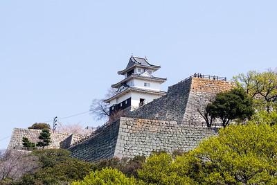 The tenshu, keep, sitting on top of multi layers of Ishigaki stone walls with various right angle entrances  leading through them, all designed to slow you down if attacking, and to expose you to the maximum firepower of various positions on various levels of the terraced walls.
