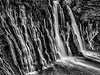 Burney Falls in Black and White. The rock is so porous that the water from Burney Creek flows through the rock.