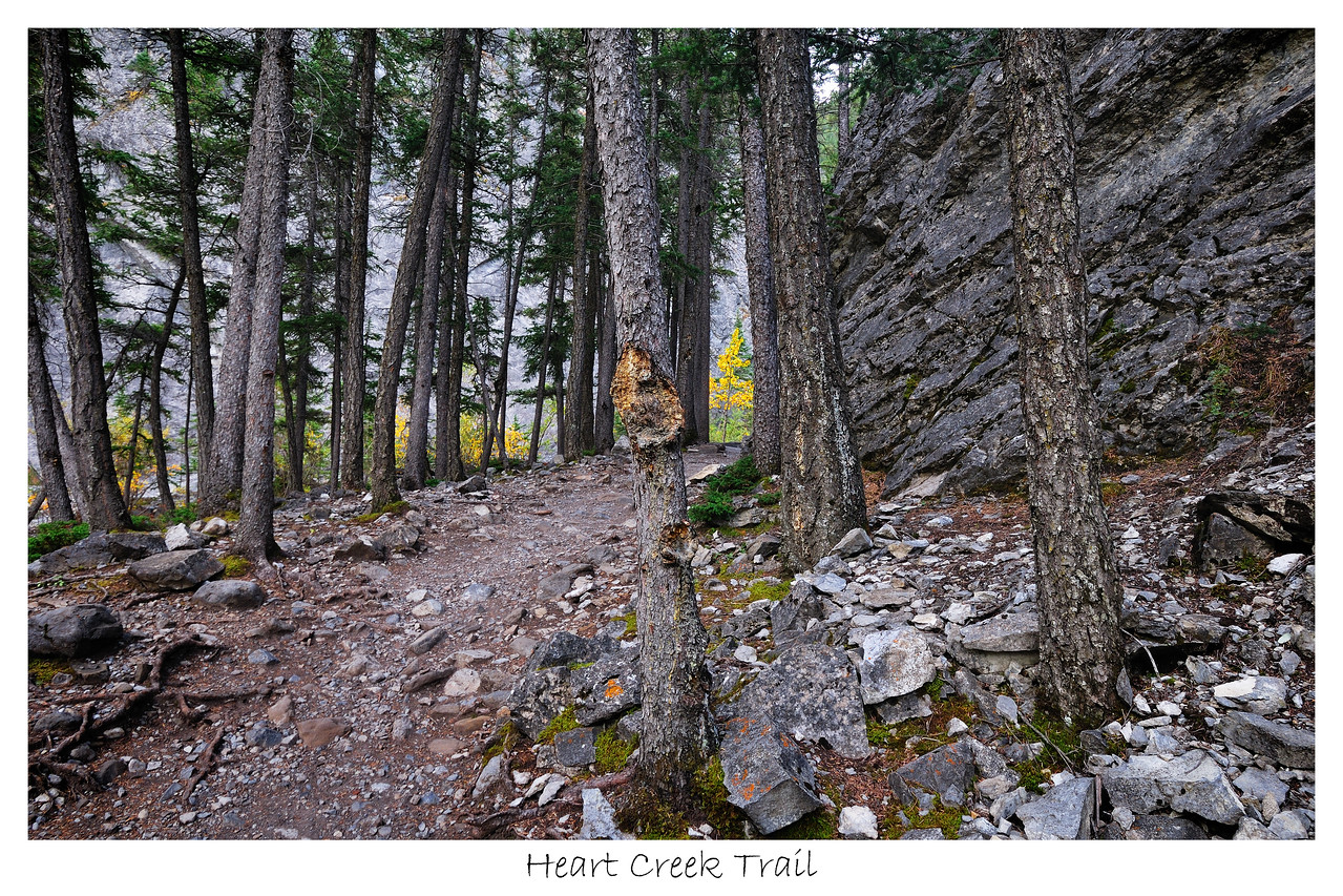 Heart Creek Trail