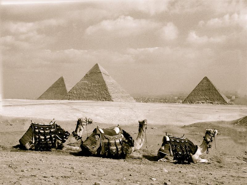 Giza, 2008