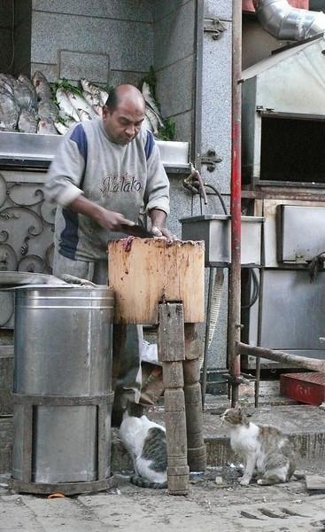 Fish Seller, Cairo