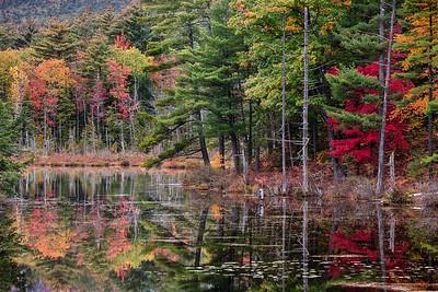 Red Eagle Pond