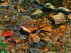 Devils Lake, WI-229
