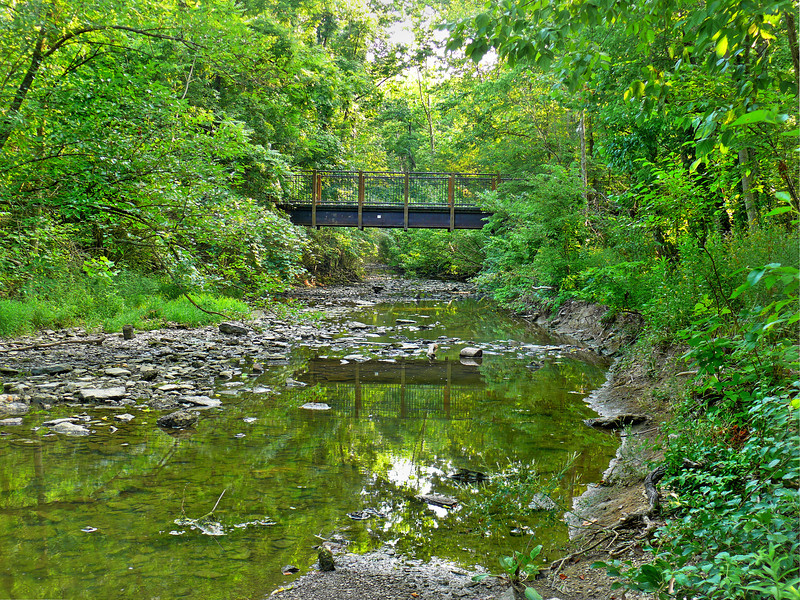 Bridge, Sharon Woods-565