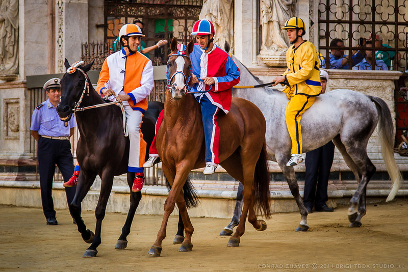 Horses and jockeys of the Leocorno (Unicorn), Pantera (Panther), and Aquila (Eagle) contrade emerge from the Cortile del Podestá onto the track at Il Campo before a prova (test race).