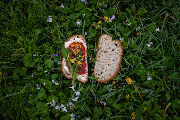 """Eat Flowers"" - Cig Harvey"