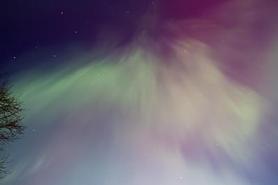 Aurora-8