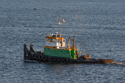 "The ""Redwood City"" Tugboat"