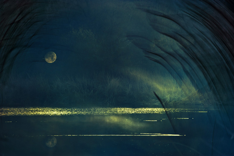 Still Moon
