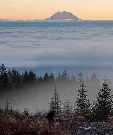 Mt. Rainier from Capitol Peak